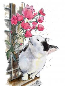 Cat-smelling-flowers