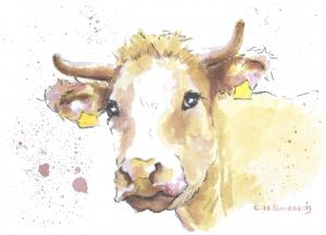 The-Contented-Cow