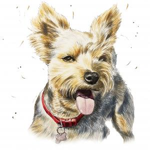Painting of Reese the dog