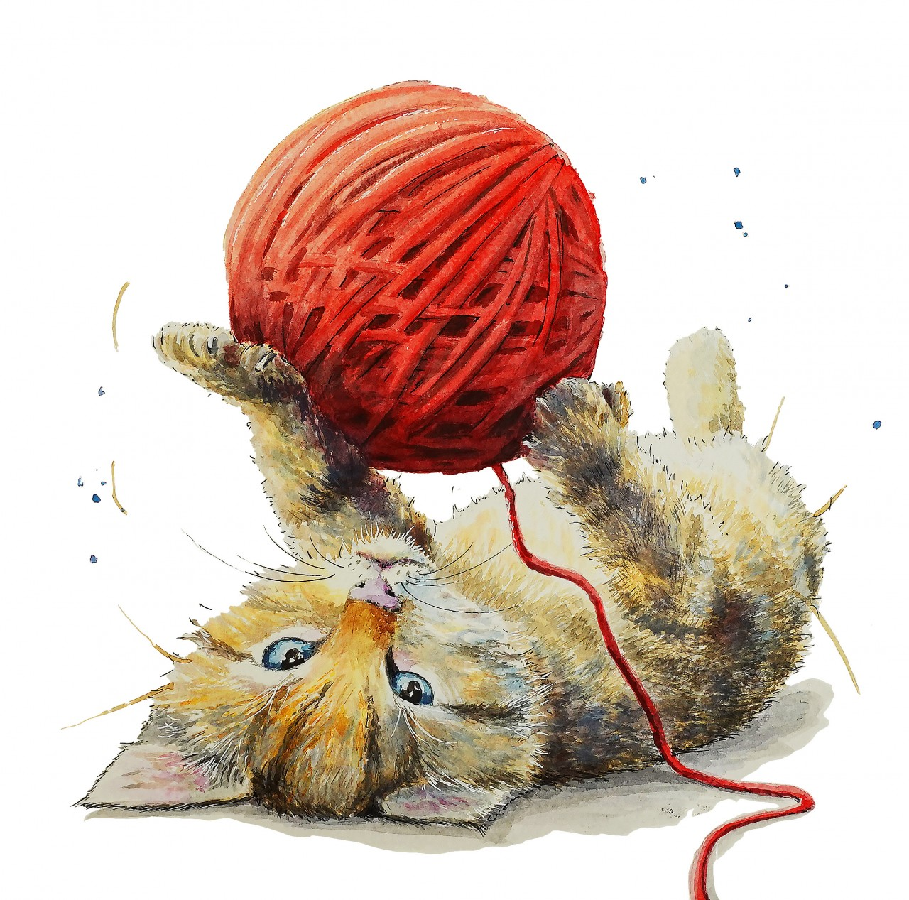 Kitty cat Playing with Wool